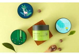 Manfaat Innisfree Green Tea Balancing Cream