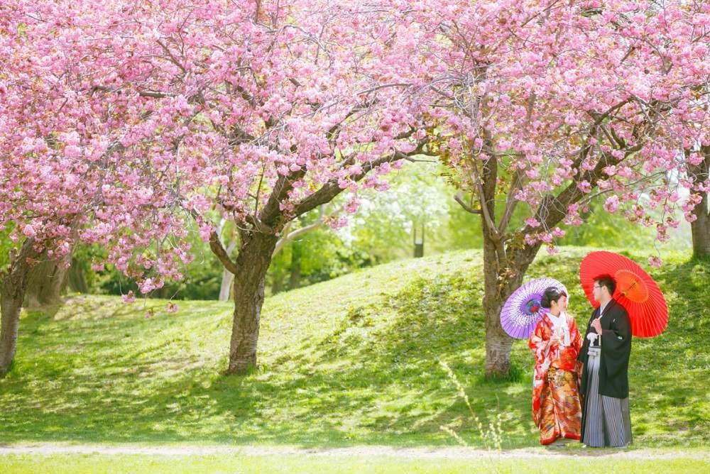 destinasi-honeymoon-romantis-di-jepang
